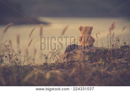 The silhouette of teddy bear sitting alone, concept of lonely