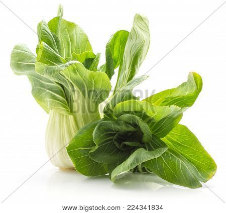 Bok choy (Pak choi) two cabbages with green flowerlike leaves isolated on white background fresh raw