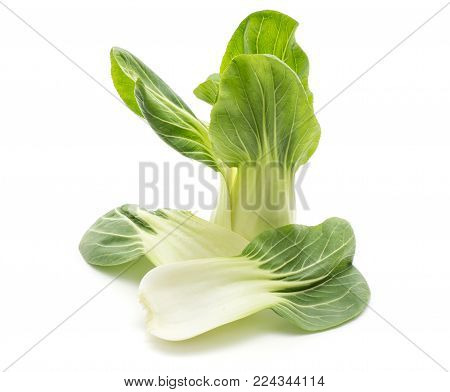 Two bok choy (Pak choi) leaves and one cabbage isolated on white background fresh