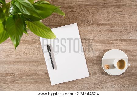 espresso in white cup with sweet nutty treat on wooden table decorated with plant green leaves and empty white paper and pen ready to take notes