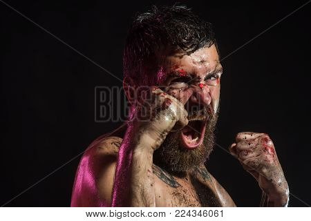 Man Shout In Fight Position With Blood Paint On Face, Fists. Bearded Hipster With Tattoo On Chest On