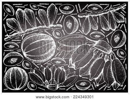 Fruit, Illustration Background of Hand Drawn Sketch of Fresh Averrhoa Bilimbi, Cantaloupe and Cultivated Bananas on Black Chalkboard.