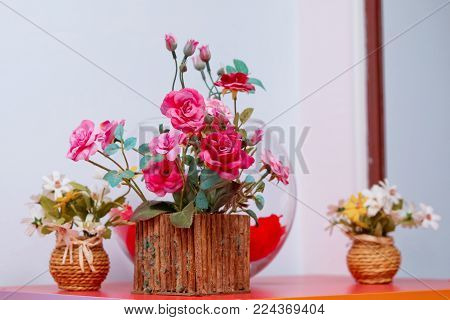 Wooden Flower pots . Beautiful pink ranunculus wooden plant in pot on white background