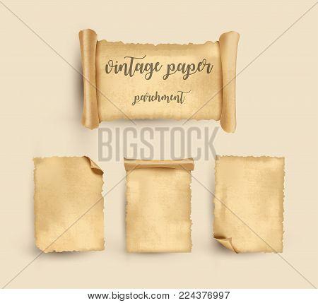 Parchment. Vintage old paper set. Vector Illustration