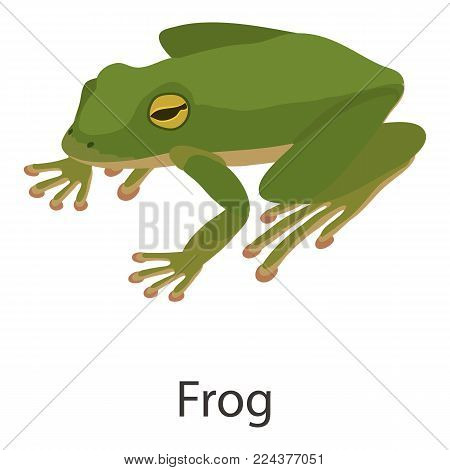 Frog icon. Isometric illustration of frog vector icon for web