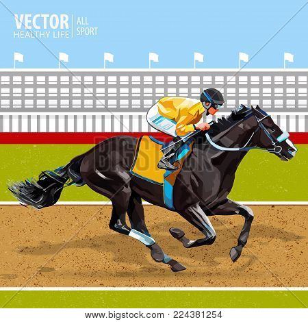 Jockey on horse. Champion. Horse racing. Hippodrome. Racetrack. Jump racetrack. Horse riding. Racing horse coming first to finish line. Black Bay thoroughbred stallion. Vector illustration