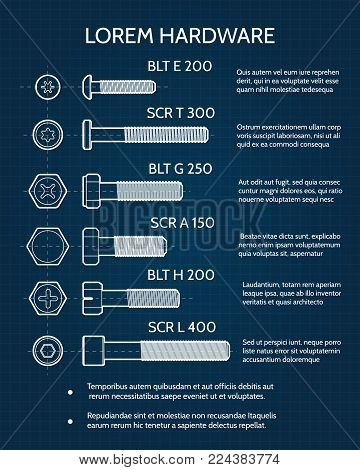 Screw and screw heads drawing. Industrial hardware company technical blueprint template, vector illustration