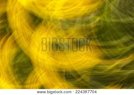 Abstract texture and background. Blurred photo of flowers with movement effect in yellow and green  colors. Fast movement shutter.  Directional blur, motion effect.