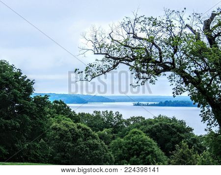 View From Mt Vernon Potomac River With Old Tree