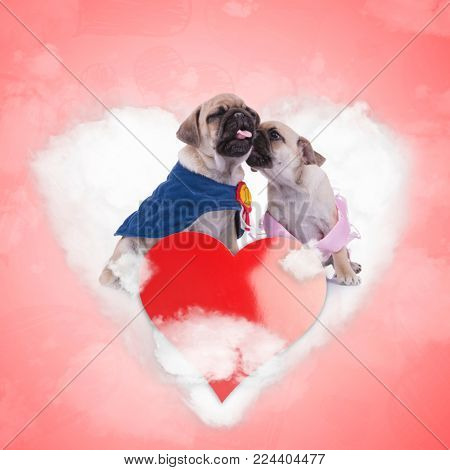 princess pug kissing her number one lover on a love cloud, valentine's day concept