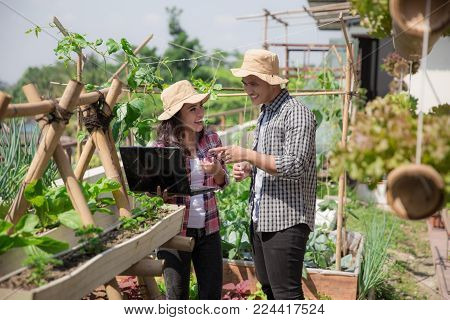 two young people in the farm discussing with laptop. urban farming concept