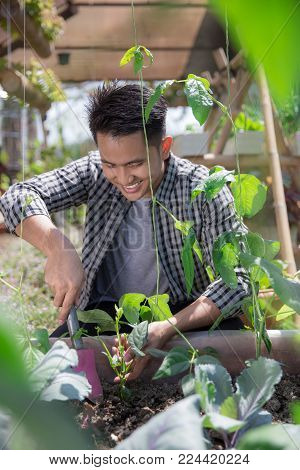 happy asian male doing gardening activity at his garden