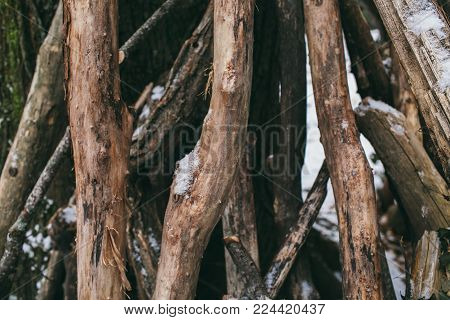 Pile of wood logs as background. Tree trunks texture and background for designers. Pile of old wood in the forest.  Stacked wood logs background.