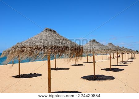 VILAMOURA, PORTUGAL - JUNE 6, 2017 - Rows of raffia parasols on the beach with the Atlantic Ocean to the rear, Vilamoura, Algarve, Portugal, Europe, June 6, 2017.