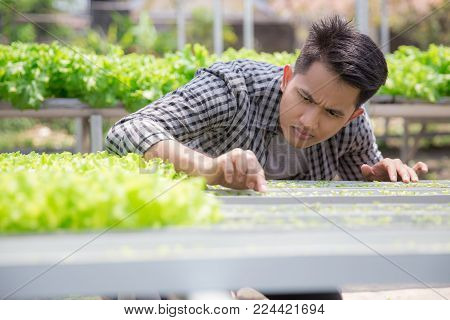 young man holding a small young green plant. new life concept