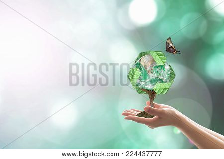 Waste Recycle Management, Energy Saving Awareness, Ecological Sustainability And Tree Planting Conce