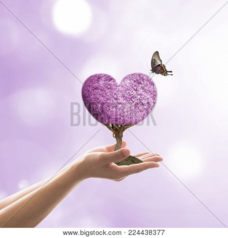 Happy Valentine's day celebration February 14th concept with purple heart tree