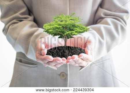 Sustainable eco friendly business investment concept in environment conservation and corporate social responsibility csr campaign