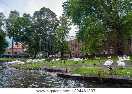 Bruges, Belgium - September 14, 2017: At the southern end of Bruges is the beautiful area known as Minnewater. The centre piece is the Lake of Love and Lovers bridge