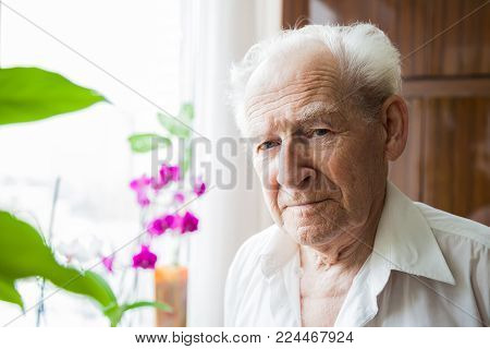 portrait of a calm old man at home