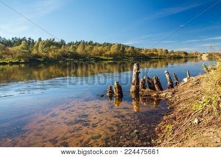 the remains of an old wooden bridge sticking out of the water of a wide river in the rays of the setting sun