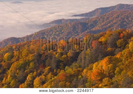 Autumn Great Smoky Mountains National Park shortly after sunrise North Carolina USA poster