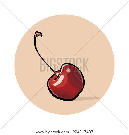 Ripe Red cherry with stalk. Sweet fruits. Illustration. Vector.