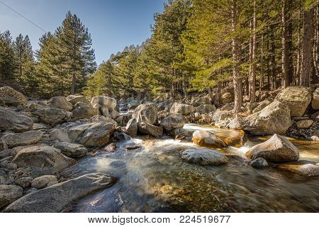 Waterfalls And Boulders At Restonica In The Mountains Of Corsica