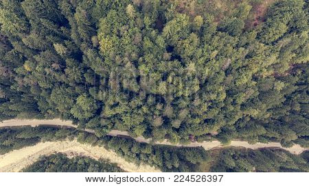 Drop down view of river bed running through a forest. Aerial photography.
