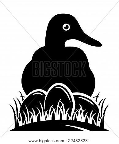 vector duck and eggs in grass isolated on white background