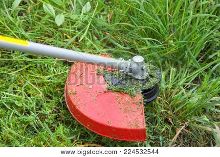 Gasoline lawn trimmer mows juicy green grass on a lawn, close-up image