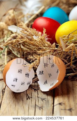 Concept Of An Escaped From Egg Of Young Chicken.colourful Easter Eggs In The Nest. On Wooden Rustic