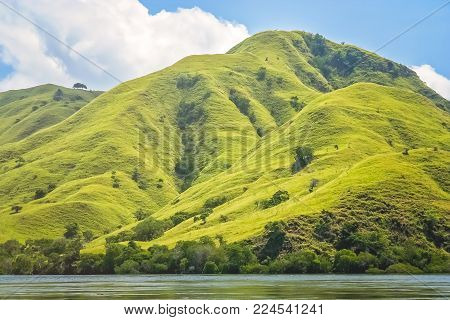Green rugged mountain coastal landscape of the Komodo island, Indonesia, Asia