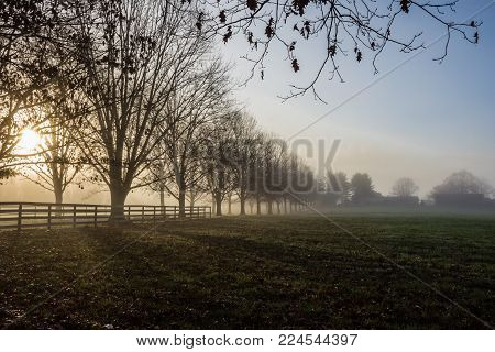 Early morning fog covers this farm in Manalapan New Jersey.