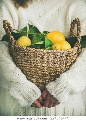 Woman gardener in white woolen sweater holding basket of freshly picked lemons. Local seasonal organic market produce concept