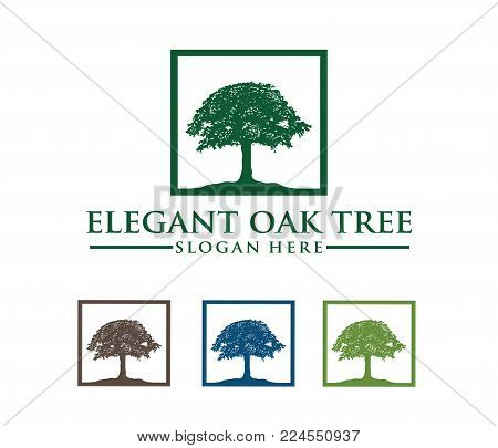 Vector Logo Design Illustration Of Oak Tree Logo, Wise And Strong, House Property Firm, Green Home S