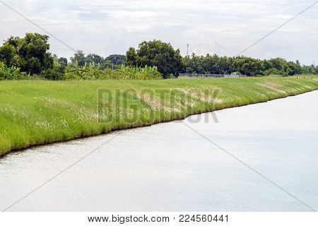Riverbank Of Waterway Canal In Thailand