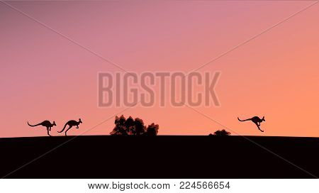 Silhouettes of kangaroos against the background of the evening sky, vector illustration