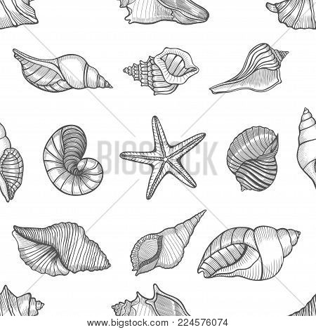 Hand drawn seamless pattern with sea shell in pastel colors. Vintage background with engraving elements.