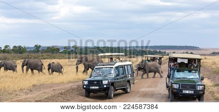 Masai Mara, Kenya - 3 August 2017: Tourists in safari vehicles, stop on a dirt road in the Masai Mara to watch a herd of elephants  passing by.