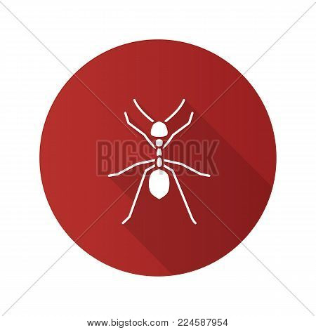 Ant flat design long shadow glyph icon. Insect. Vector silhouette illustration