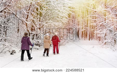 Group of Senior women working out Nordic walking. Nordic walking in the snowy winter park.
