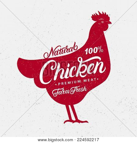 Chicken silhouette and hand written lettering words chicken, farm, fresh, natural. Logo, sign, icon for groceries, meat stores, butcher shop, farmer market. Poster for meat related theme. Vector