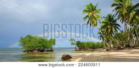 Beautiful Caribbean sea and green palm trees. Colorful rainbow over caribbean sea .Travel background.