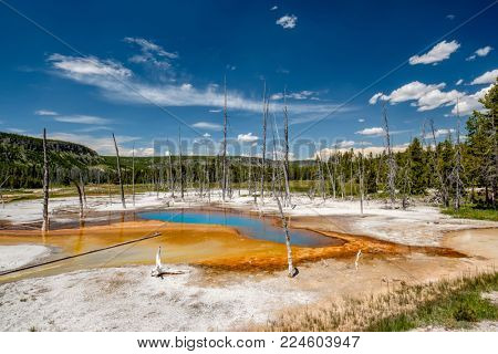 Hot thermal spring Opalescent Pool in Yellowstone National Park, Black Sand Basin area, Wyoming, USA