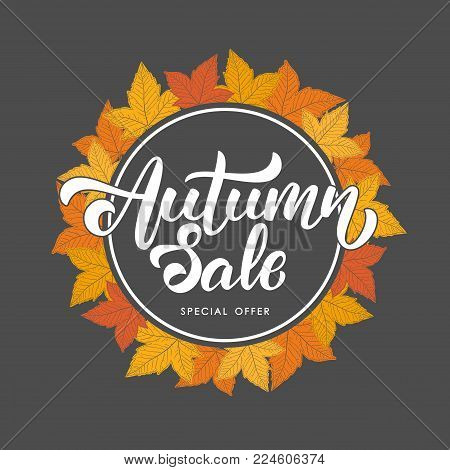 Vector illustration: Handwritten lettering of Autumn Sale on hand drawn autumn leaves background