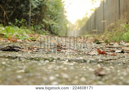 Walk path on daily leisure outdoor chill out