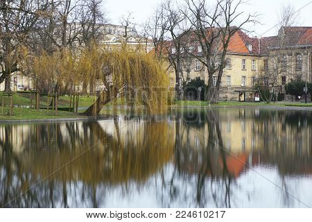 Poznan, Poland - December 31, 2017: Lake in the park in Poznan, Poland. The old willow is reflected in the water.