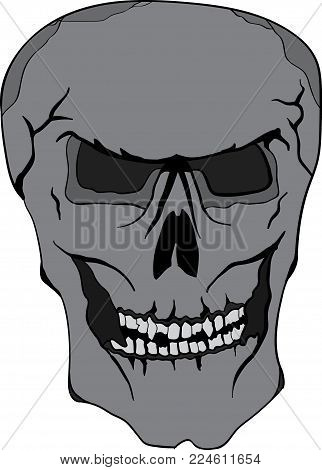 Fully hand drawn three color skull illustration