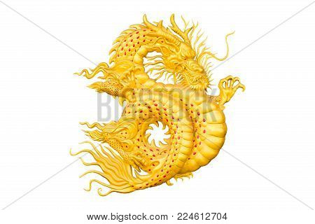 golden dragon on white background for chinese new year.